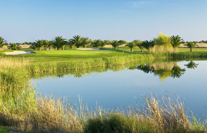 Dom Pedro Laguna Golf Course surrounded by palm trees and water