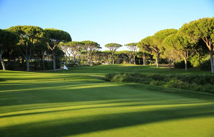 Green with flastick in the Dom Pedro Millennium Golf Course