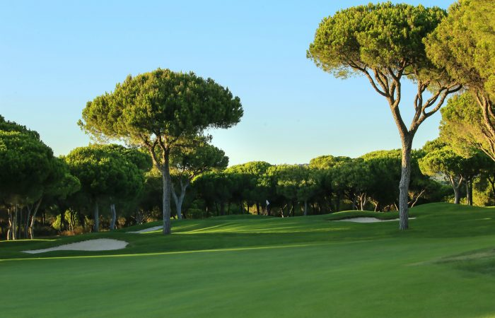 Dom Pedro Millennium Golf Course surrounded by pine trees