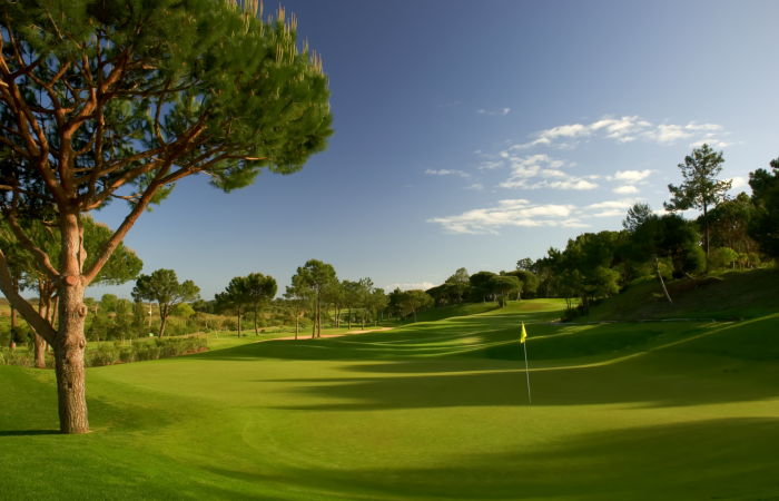 Fairway in the Pinheiros Altos Golf Course