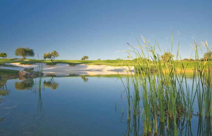 Lake in the Vale da Pinta Golf Course