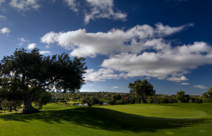 Silves Golf Course with big carob tree on the left