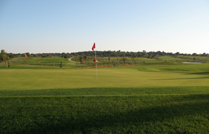 Green with flagstick in the Silves Golf Course