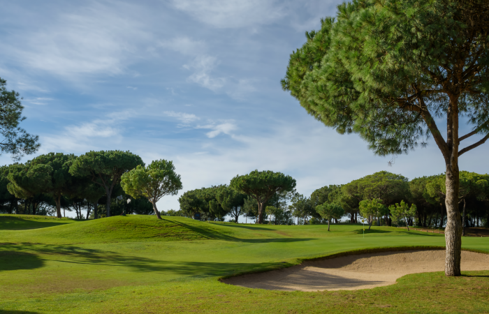Vila Sol Golf Course with bunker and pine trees