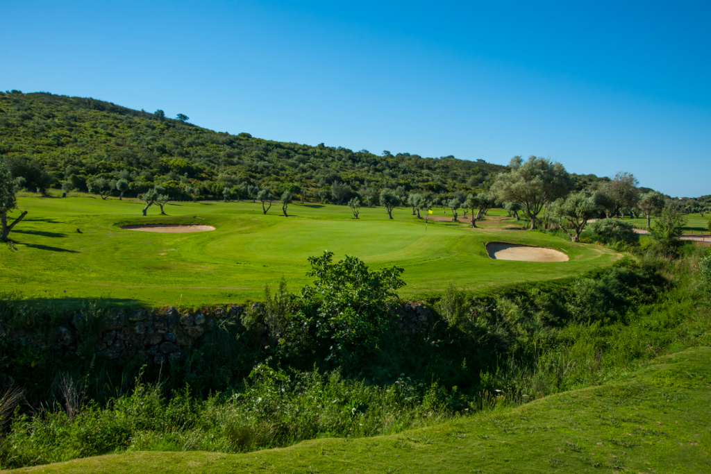 Álamos Golf course surrounded by olive trees