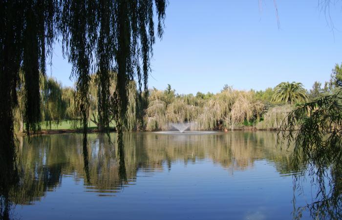 Big lake in the Alto Golf Course