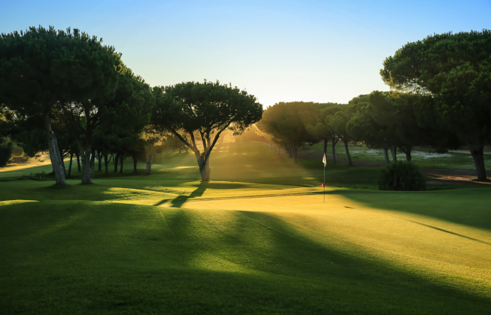 Sun illuminating a green in the Dom Pedro Pinhal Golf Course
