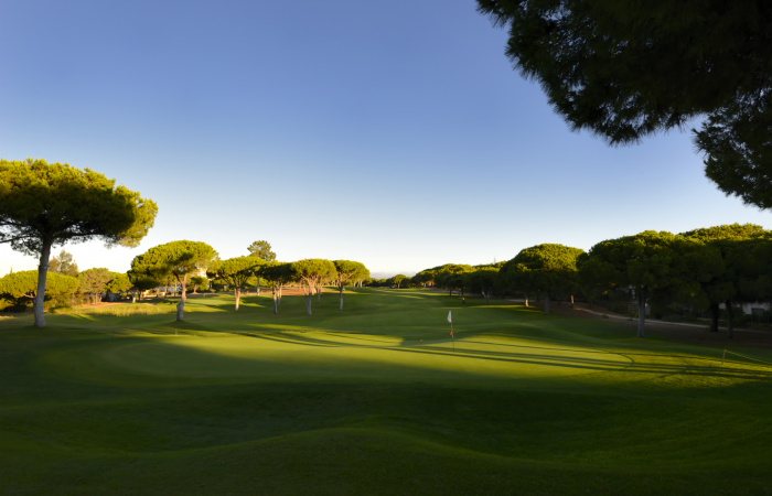 Green in the Dom Pedro Pinhal Golf Course
