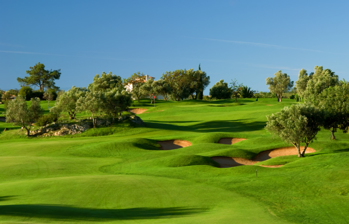 Gramacho Golf Course surrounded by olive trees and bunkers