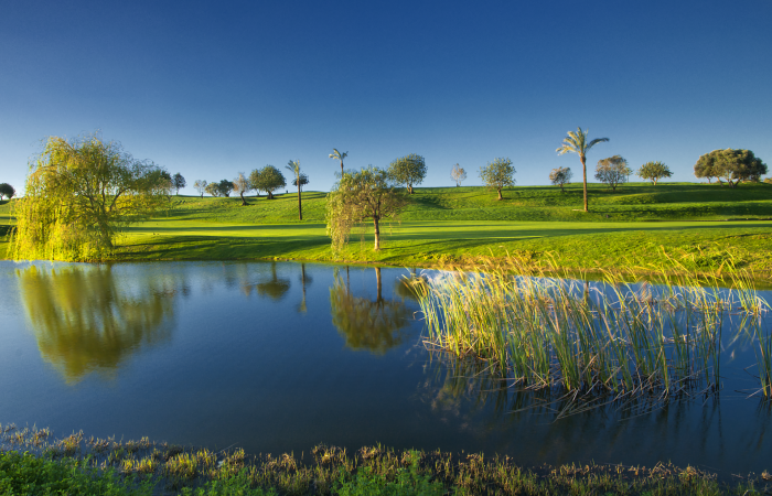 Lake in the Gramacho Golf Course