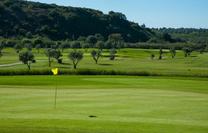 Green with flagstick in the Morgado Golf Course