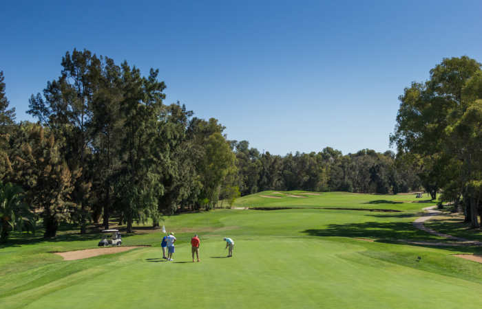Four men in the green of Penina Golf Course