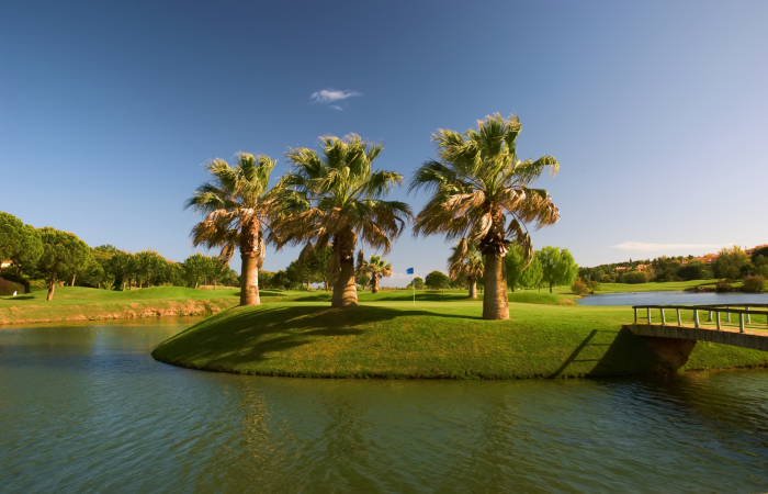 Green in a small island on a lake in Pinheiros Altos Golf Course