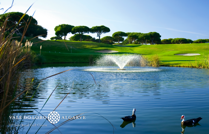 Small lake with two ducks in Vale do Lobo Royal Golf Course