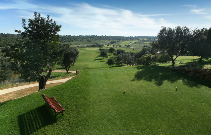 Tee with bench in the Silves Golf Course
