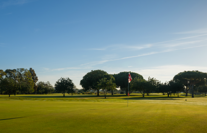 Green surrounded by trees in the Vila Sol Golf Course